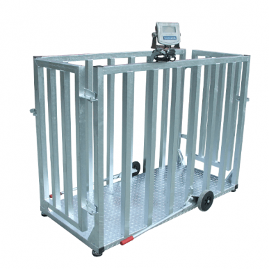 Balance pour bovins - AGW0650S2