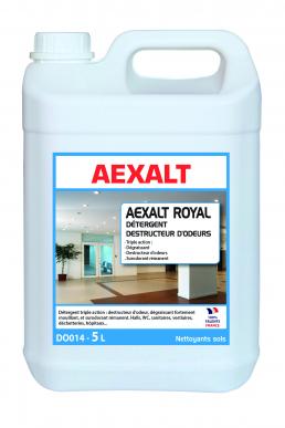 Détergent multi-usages déstructeur d'odeur ROYAL Bidon 5 L