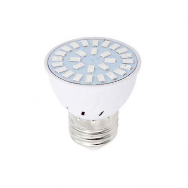 Ampoule LED Horticole Germination E27 6W