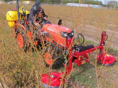 Bâton d'herbicide pour les myrtilles unilatérale - TOLA 1