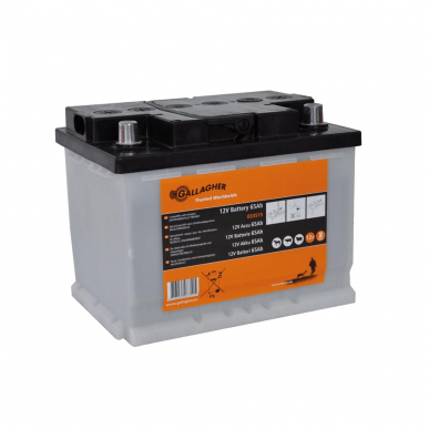 Batterie 12V/65Ah (242x175x190mm)