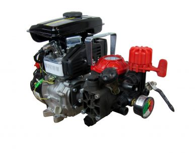 Benzin Motorpumpe - AR 252