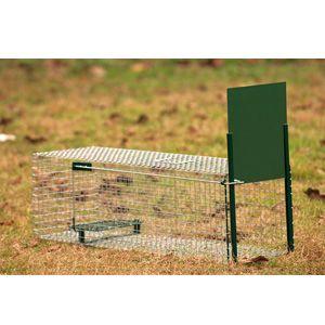 Lebendfalle Kleintier Boxtrap, ein Eingang, 82 x 32 x 31 cm