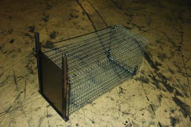 Boîte à lapins / rats 1 entrée 50x22x23 grillage galva+ vert, maille 25x13, tôle fermeture 10/10ème