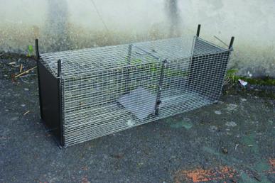Boîte à lapins / rats 2 entrées 60x22x23 grillage galva+ vert, maille 25x13, tôle fermeture 10/10ème