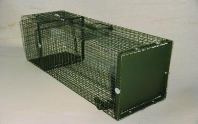 Boîte à ragondins, 1 entrée horizontale, 100x35x30 grillage galva+ vert, maille 25x13, tole fermeture 15/10ème