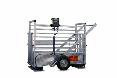 Cage de pesage électronique PM 300 Galva