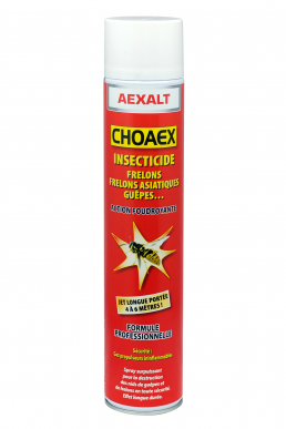 Insectiside anti-guêpes et frelons CHOAEX Effect choc - Aérosol 1000 mL