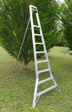 Échelle arbres fruitiers tripode - 1,92m à 2,7m