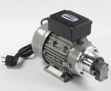 Electropompe auto-amorçante 230 V pour le transfert de fluides, corps en acier inoxydable, débit 11 l / min