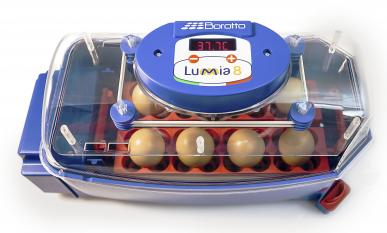 Automatische Brutmaschine aus thermoisolierendem ABS - LUMIA 8