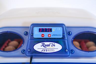 Automatische Brutmaschine - REAL 24
