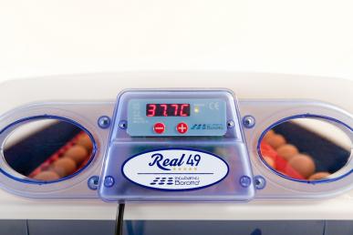 Automatische Brutmaschine - REAL 49