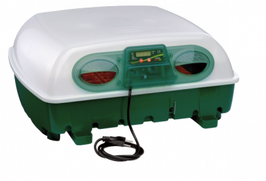 Incubator for up to 49 eggs