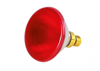 "Lampes infrarouges rouges ""Horizont"" par 175W"