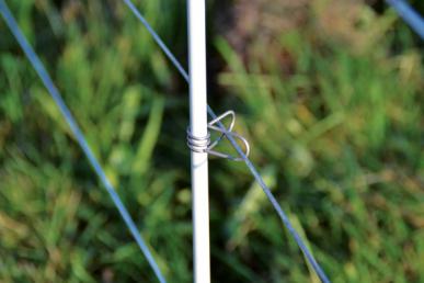 Isolateur master clip inox, pour piquet fibre de verre, Ø10 mm