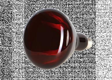 "Lampe infrarouge rouge ""horizont"" 150w"
