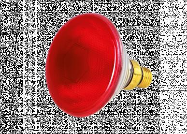 """Lampes infrarouges rouges """"horizont"""" par 100w"""