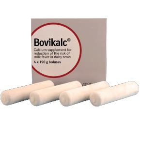Supplément de calcium 4 pcs / boîte - Gel à Boli
