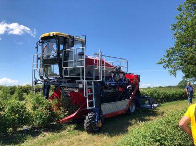 Machine automotrice pour la récolte des baies OSKAR 4WD