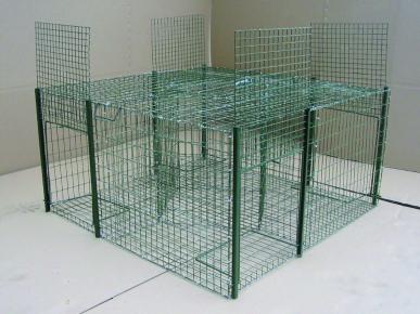 Piège à pigeons, 75x75x30 carré, maille 25x25 grillage galva+ vert, 4 captures 1 appelant
