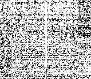 Piquet plastique standard 104 cm 10 œillets placés coté bêche