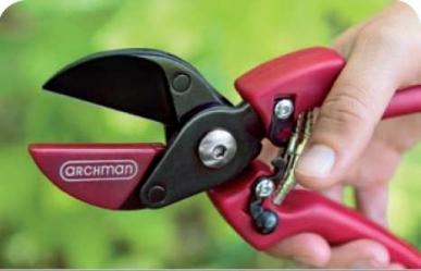Sécateur professionnel de taille lame téflon enclume droite L 210 mm coupe Ø 25 mm