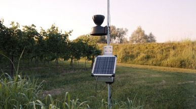 Sistema di supporto decisionale DSS Irrigazione e Difesa Vigneto