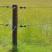 Isolateur d'ancrage (5)